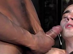 Three interracial twinks jizz by turns