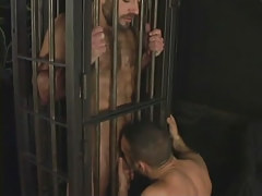 Hairy full-grown gay guy sucked in cage